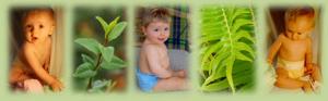 Eco-Bebé | pañales reutilizables…