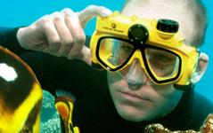 Liquid Image | fotografía y videos bajo del agua