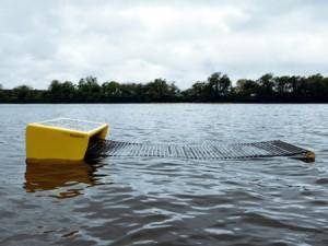 Seaswarm: robot filtrador